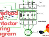 Motor Wiring Diagram 3 Phase 3 Phase Ac Contactor Wiring Diagram Wiring Diagrams Bright