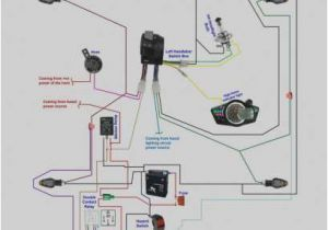 Motorcycle Hazard Lights Wiring Diagram Hazard and Turn Signal Wiring Diagram Cvfree Pacificsanitation Co