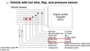 Motorino Xpd Wiring Diagram 36 Motorino Xpd Wiring Diagram Wire Diagram