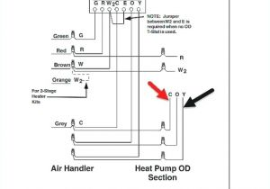 Nest thermostat Humidifier Wiring Diagram Nest thermostat Wiring Requirements Fondecor Com Co