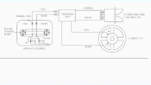 Neutrik Xlr Wiring Diagram Speakon Wiring Diagram Wiring Diagram