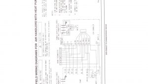 Outdoor Speaker Wiring Diagram Home Speaker Diagram Wiring Diagram Database