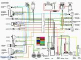 Panther 110 atv Wiring Diagram Wiring Diagram for Chinese 110 atv Eyelash Me