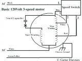 Patton Fan Wiring Diagram Fasco Furnace Motor Wiring Diagrams Wiring Diagram