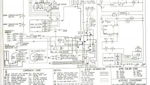 Payne Furnace Wiring Diagram thermostat Wiring Payne Gas Furance Wiring Diagram Data