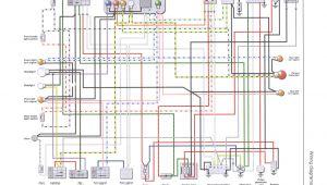 Piaggio Zip 50 2t Wiring Diagram Piaggio Wiring Harness Wiring Diagram Show