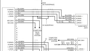 Pioneer Deh-1000 Wiring Diagram Pioneer Deh 1000 Wiring Diagram On Images Free Download Also 1600