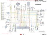 Polaris 330 Magnum Wiring Diagram Polaris 330 Magnum Wiring Diagram Luxury Polaris 800 Ecu Wiring