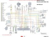 Polaris Predator 500 Wiring Diagram 2008 Polaris Ranger Wiring Diagram Wiring Diagram Expert