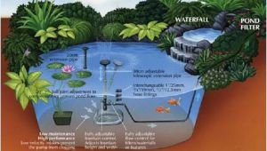 Pond Wiring Diagram Midipond Pond Diagram Fish Pond Technic Mini Pond Pond Aquarium