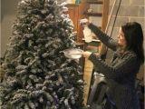 Pre Lit Christmas Tree Wiring Diagram Diy Flocked Christmas Tree Lovely Etc