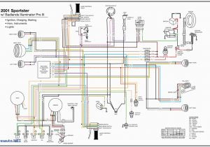 Precision Fuel Pump Wiring Diagram 1994 Bmw Fuel Pump Wiring Diagram Wiring Diagram Schematic