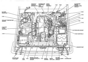 Precision Fuel Pump Wiring Diagram Wiring Diagram Along with 1995 ford F 150 Fuel Pump Relay Further