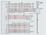 Pyle Hydra Amp Wiring Diagram Pyle Amp Wiring Diagram Wiring Diagram Centre