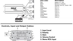 Pyle Hydra Amp Wiring Diagram Pyle Plmra620 Amplifier Wiring Diagram Wiring Diagram Srcons