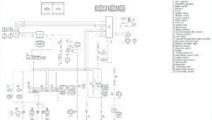 Raptor 660 Wiring Diagram Wiring Schematic for 2004 R1 Wiring Diagram Autovehicle