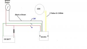 Rec Reg Wiring Diagram Ooracing Performance Monkey Bike Pit Bike Madass Zoomer Dirt