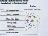 Reese Trailer Wiring Diagram Delta Trailer Wiring Diagram Wiring Diagram Name