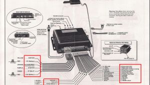 Remote Starter Wiring Diagrams Porsche Remote Starter Diagram Wiring Diagram for You