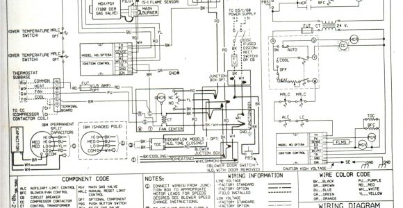 Rheem Heat Pump Wiring Diagram Standard Heat Pump Wiring Diagram Wiring Diagram Database