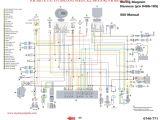 Ricky Stator Wiring Diagram Trx 250r Wiring Schematic Wiring Diagram Go