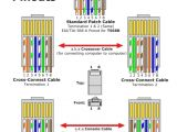 Rj45 Crossover Cable Wiring Diagram Phone Cat 5 Wiring Diagram Wiring Diagram Perfomance