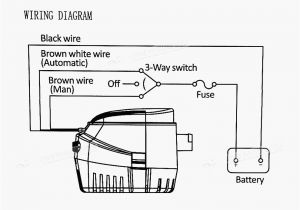 Rule A Matic Float Switch Wiring Diagram 3 Float Switch Wiring Diagram Wiring Library