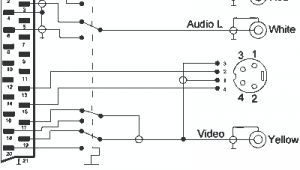 Scart to S Video Wiring Diagram Tv Out is Blackcomposite and S Video