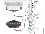 Seymourduncan Com Support Wiring Diagrams Duncan Wiring Diagram Malochicolove Com