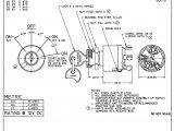 Small Engine Ignition Switch Wiring Diagram 4 Wire Switch Wiring Diagram Wiring Diagram Go