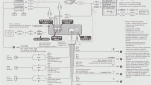 Sony Mex N4200bt Wiring Diagram Wiring Diagram for sony Wiring Diagrams All