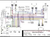 Sony Xplod 52wx4 Wiring Harness Diagram sony Xplod Head Unit Wiring Harness Diagram Radio Wiring