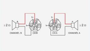 Speakon to 1 4 Inch Wiring Diagram Speakon Jack Diagram Wiring Diagram