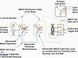 Speed Tech Lights Wiring Diagram Wiring Diagram for 2fx Wrapper Book Diagram Schema