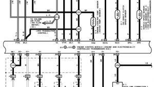 Spitronics Engine Management Wiring Diagram Wiring Diagram for Lexus V8 Wiring Diagram Sheet