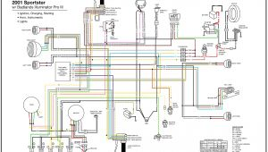 Sportster Wiring Diagram Harley Wiring Harness 2007 Wiring Diagram Sample