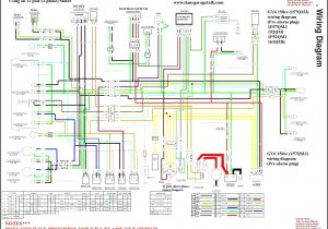 Ssr Pit Bike Wiring Diagram 110cc Mini Bike Wiring Diagram Wiring Diagram