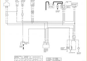 Ssr Pit Bike Wiring Diagram Ssr 125 Wiring Diagram Wiring Diagram