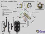 Strat Wiring Diagrams Fender Squier Guitar Wiring Diagram Free Download Wiring Diagram Site