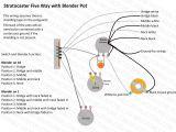 Strat Wiring Diagrams Fender Strat Pickup Wiring Wiring Diagrams