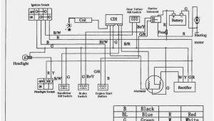 Sunl 110cc atv Wiring Diagram Sunl 110cc atv Wiring Diagram Fresh Sunl 49cc E22 5 Pin Cdi Wiring