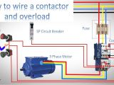 Thermal Overload Switch Wiring Diagram How to Wire A Contactor and Overload Direct Online Starter by Earthbondhon