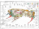 Toyota Wiring Harness Diagram toyota Wiring Color Codes Wiring Diagrams All