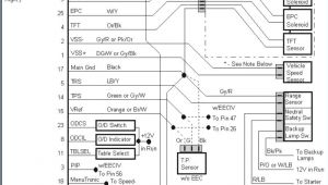 Tps Wiring Diagram Tps Wiring Diagram Beautiful Rb25 Neo Tps Wiring Diagram Block and