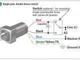 Treadmill Motor Wiring Diagram 4 Wire Motor Diagram Wiring Diagram Article Review