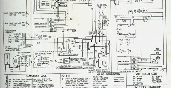 Unit Heater Wiring Diagram Unitary Products Wiring Diagram Wiring Diagram Article