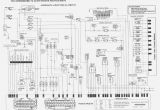 Vt Commodore Wiring Diagram Download Vt Commodore Wiring Diagram Wiring Diagram Article