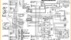 Western Plow Wiring Diagram 9 Point Western Unimount Wiring Diagram Wiring Diagram Data