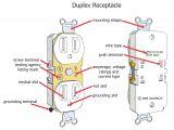 Wiring A Duplex Outlet Diagram Wire Plug Diagram Wiring Diagram