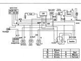 Wiring Diagram for 110cc 4 Wheeler Panther 110 atv Wiring Diagram Manual E Book